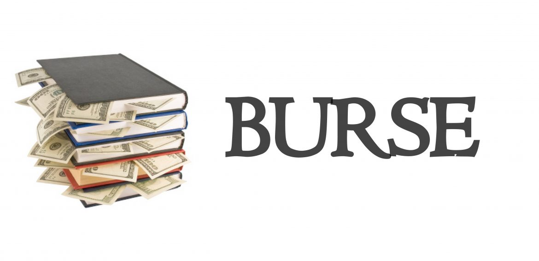 Burse 2018-2019