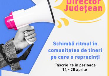 Consiliul Tineretului din România (CTR) recrutează pentru postul de Director Județean